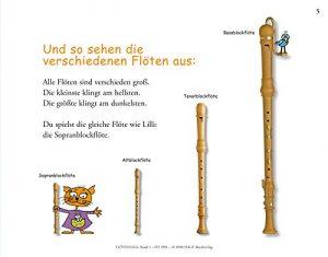 Flötenlilli Flötenfamilie